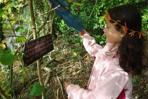Girl on the Halloween woodland trail