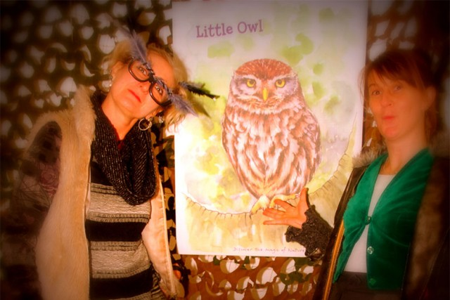 owl witches messengers