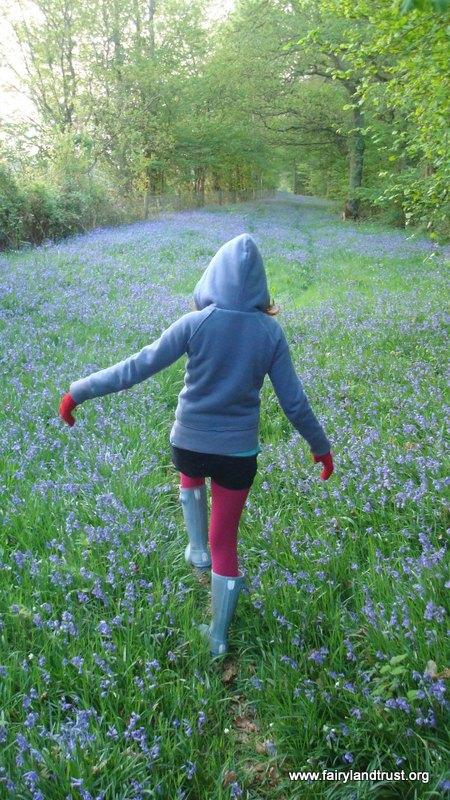 Walking through Bluebells - Fairyland Trust