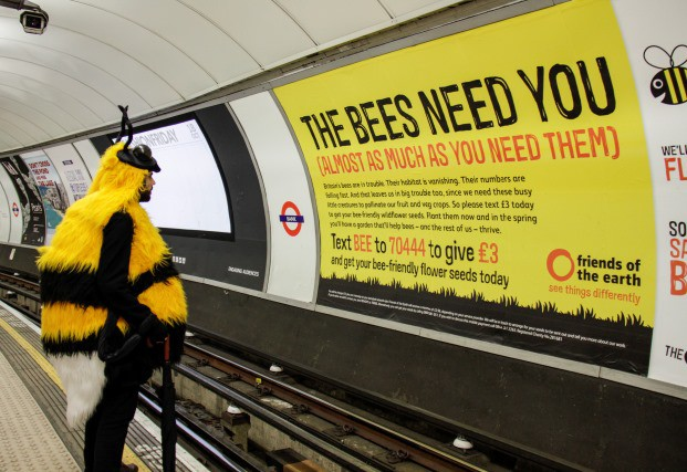 The Bee Cause on the tube, October 2013