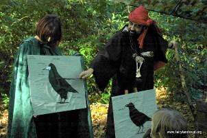 Bird Power Wizard Training
