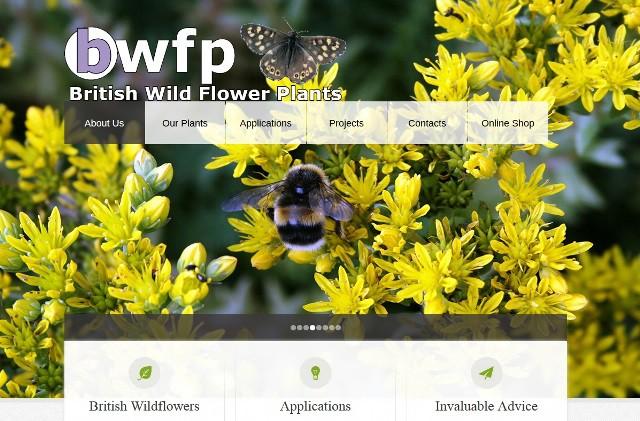 bwfp website