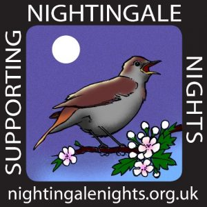 Support Nightingale Nights web