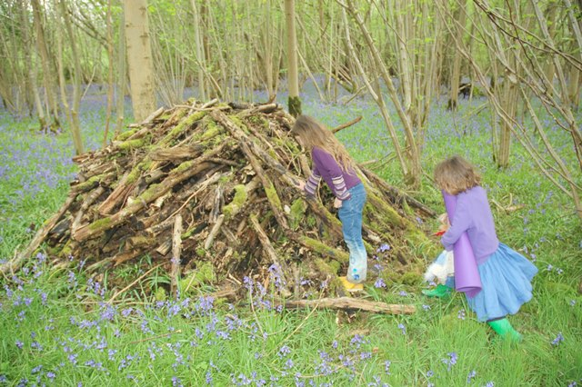playing on a wood pile foxley wood 640