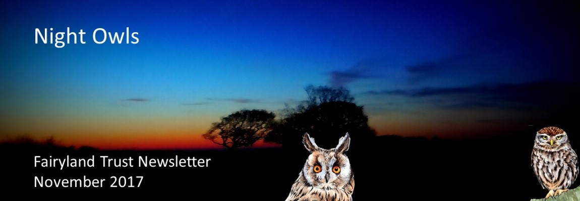 Night Owls Newsletter is Out!