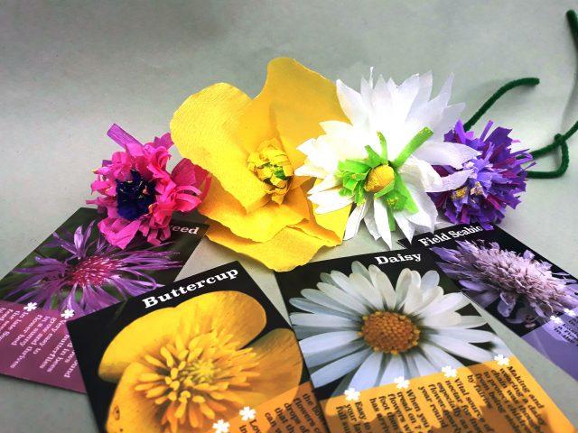 Fairyland Trust Wildflower Workshop