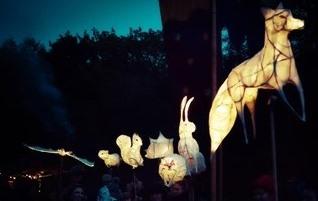 Animal Lantern Parade