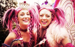 Pink Fairies Return