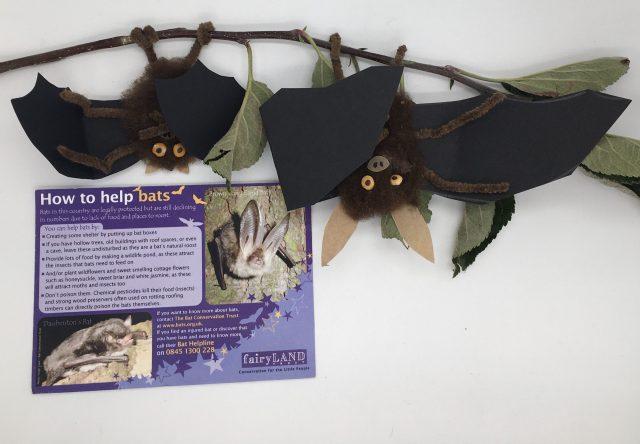 Fairyland Trust Bats Workshop
