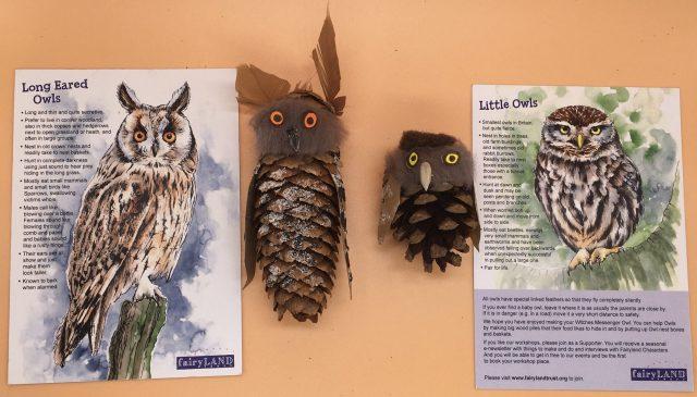 Fairyland Trust Owl Workshop